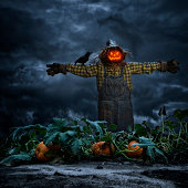 istock Scarecrow with crow standing in pumpkin patch field at night 488379026