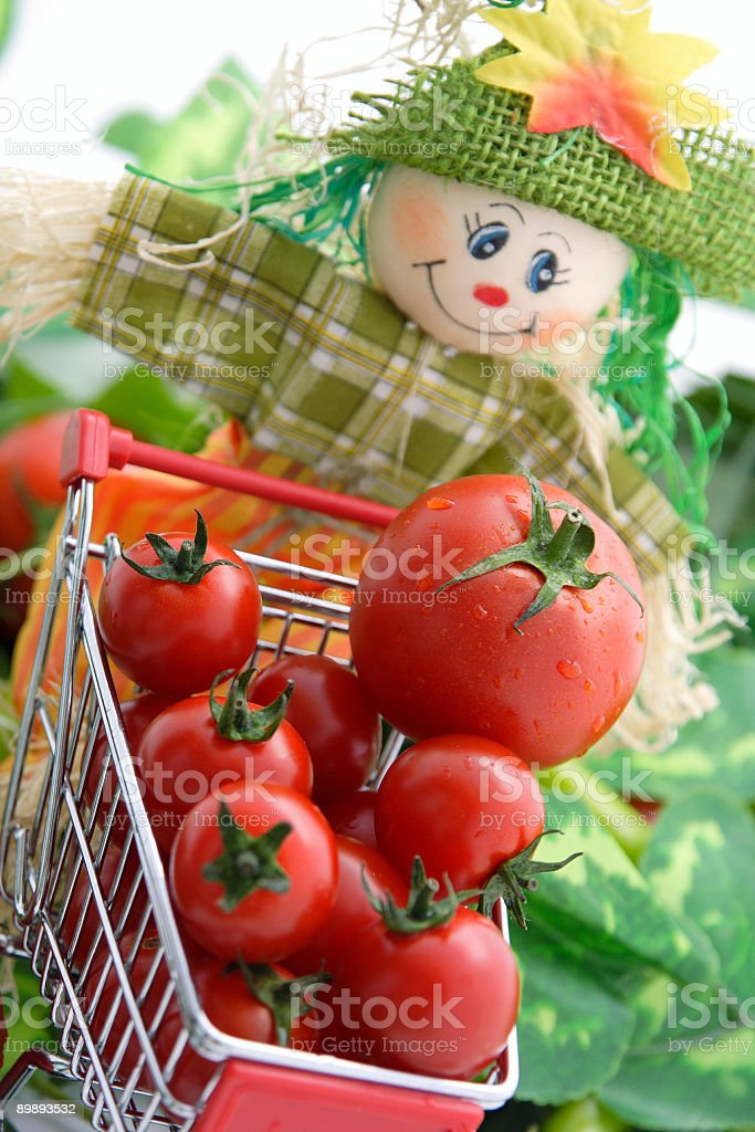 Scarecrow's shopping cart royalty-free stock photo