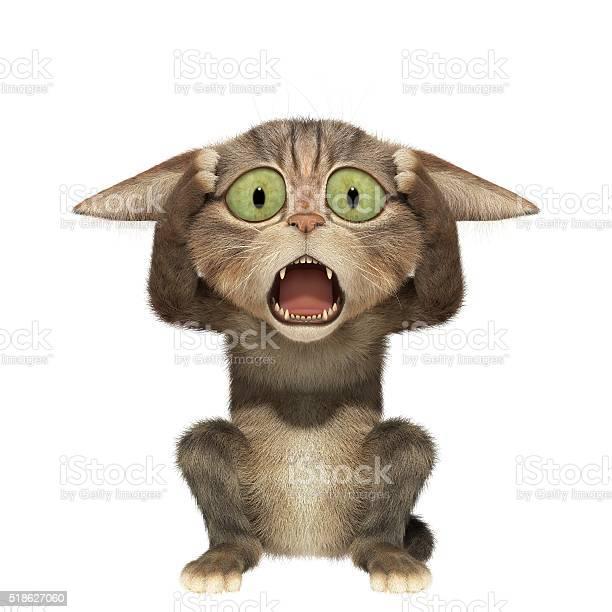 Scared kitten holding his head picture id518627060?b=1&k=6&m=518627060&s=612x612&h=x2hlodkdsc p60lxjdwwjcnvjot3j737nskqi2o wqw=