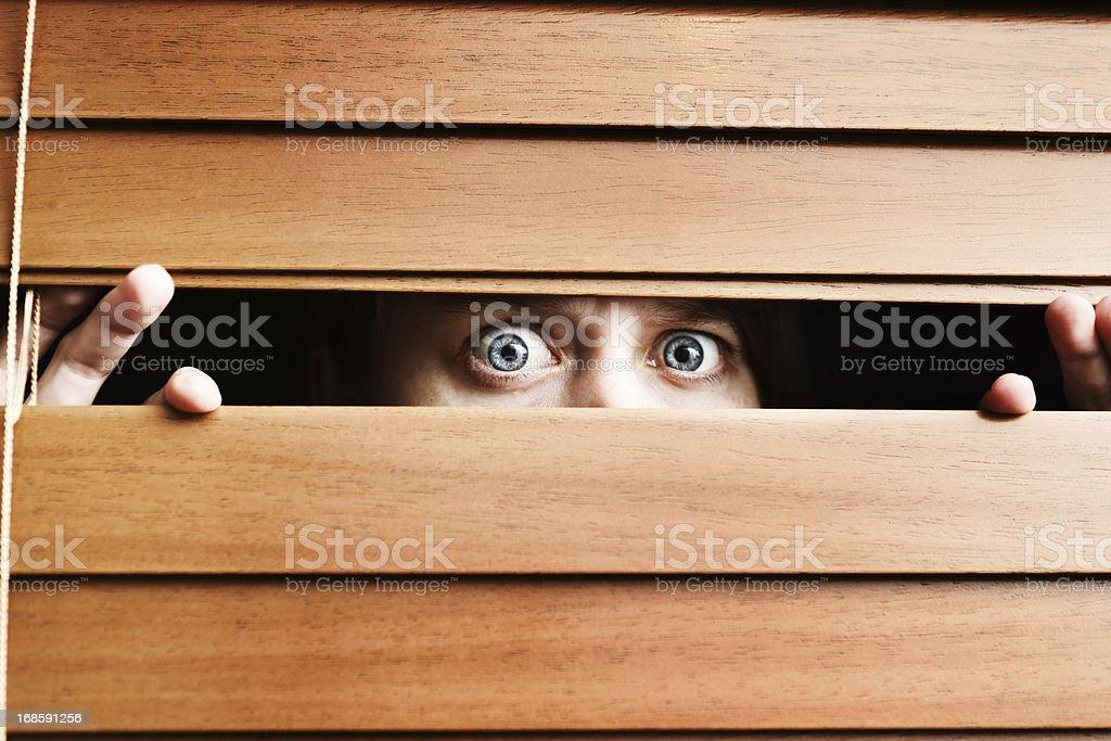 Scared teenager peeps through slats of wooden venetian blind royalty-free stock photo