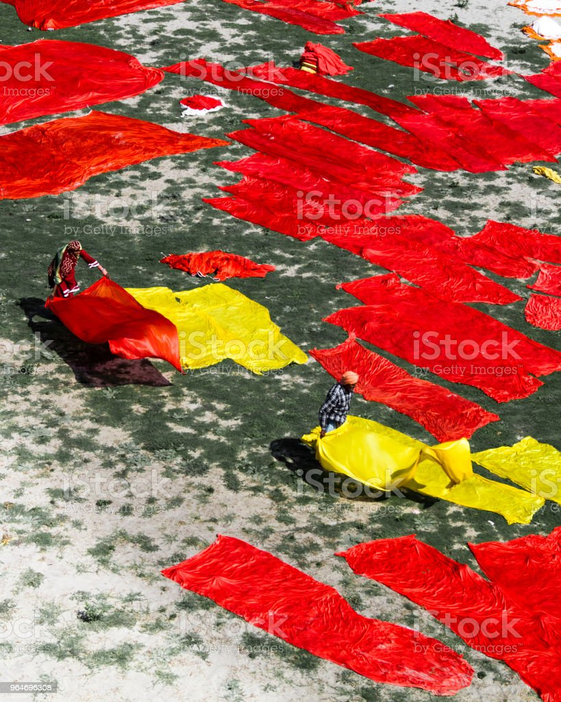 Scarlet and gold royalty-free stock photo