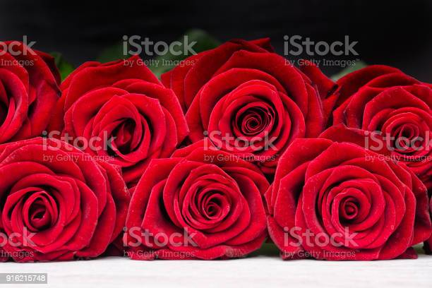 Scarlet roses on a black background close up picture id916215748?b=1&k=6&m=916215748&s=612x612&h=itvakodymqlfdqe7q3pehdeb9nzd3ipdqia51e6rlnm=