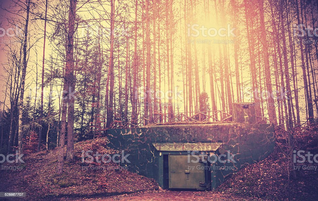 Scary bunker hidden in a forest with surreal colors. bildbanksfoto