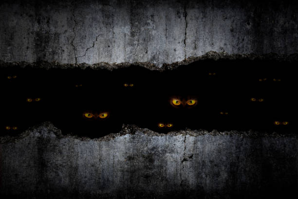 Scary eyes in damaged grungy crack and broken concrete wall and the dark Scary eyes in damaged grungy crack and broken concrete wall and the dark Halloween halloween cat stock pictures, royalty-free photos & images