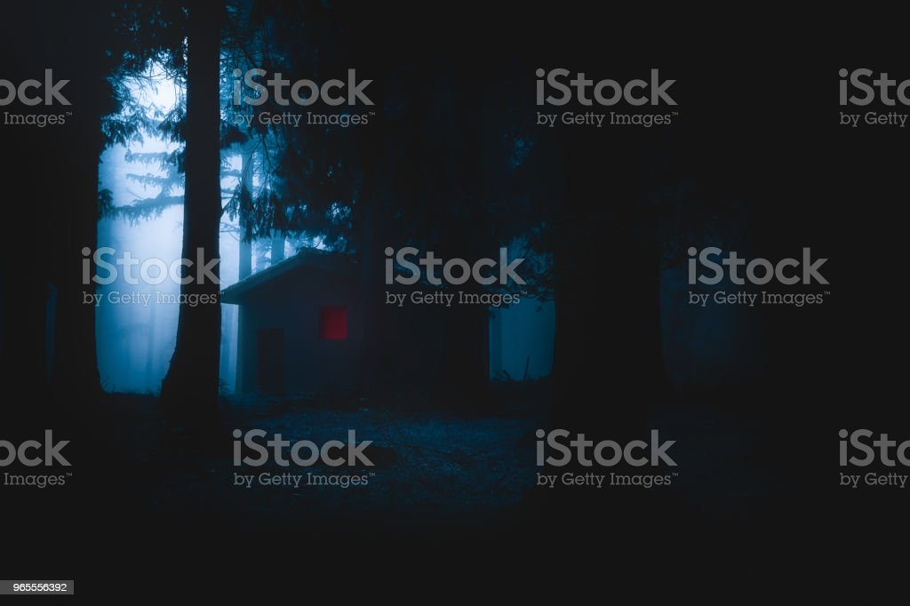 miedo casa iluminada en bosque misterioso horror por la noche - foto de stock