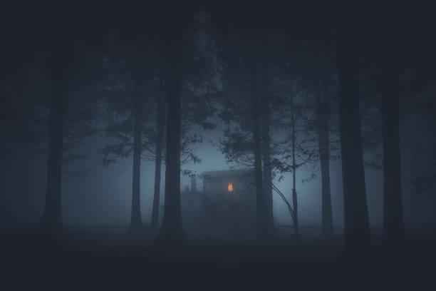 straszny dom w tajemniczym lesie grozy - upiorny zdjęcia i obrazy z banku zdjęć