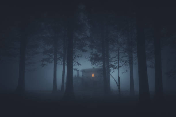 scary house in mysterious horror forest - spooky stock pictures, royalty-free photos & images