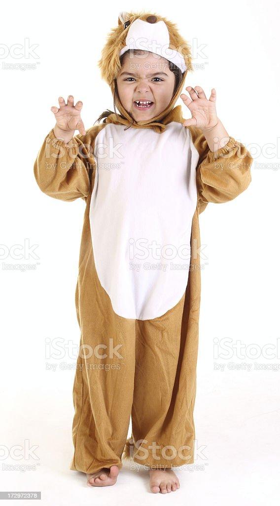 scary lion stock photo