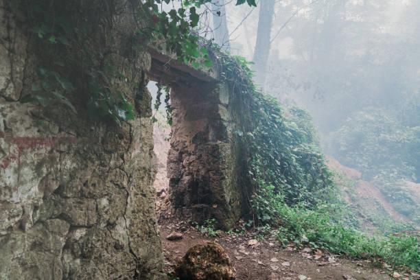 beängstigend alten eingang zum wald-friedhof im dichten nebel - waldfriedhof stock-fotos und bilder