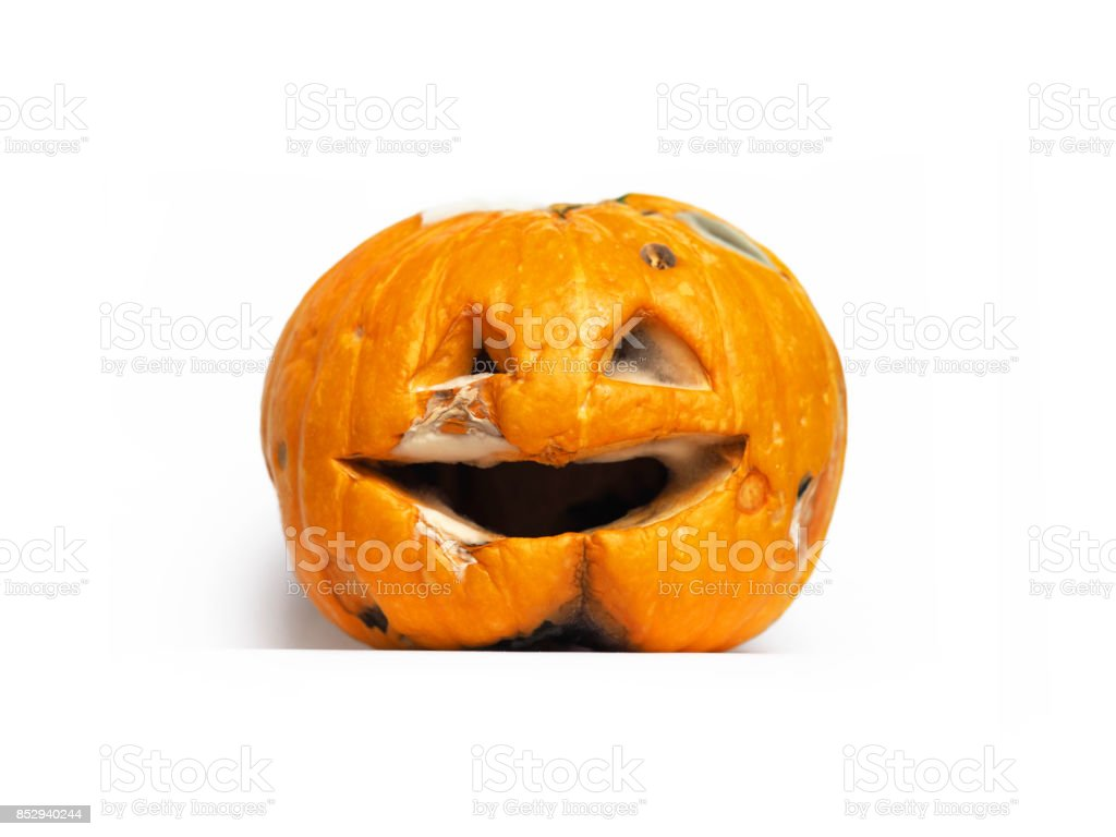 Scary, rotting, creepy and decaying old jack-o-lantern after Halloween. stock photo