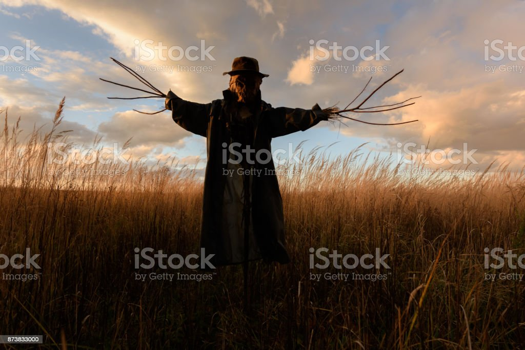 Scary scarecrow in a hat stock photo