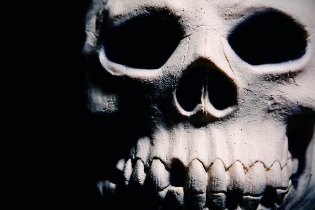 Scary skull close up picture id852138628?b=1&k=6&m=852138628&s=612x612&w=0&h=jnifmkvei35 k2qy9kpwhydbqnyufmskohhp9pdx80c=