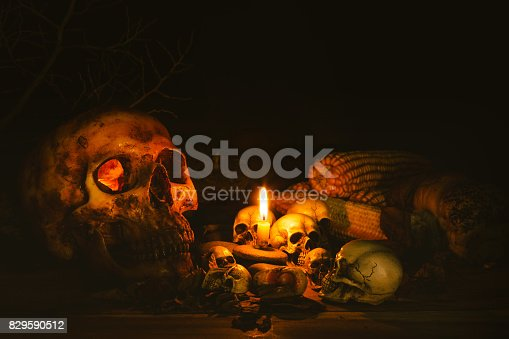 istock Scary skull set in low light candle use in halloween or mystery concept 829590512