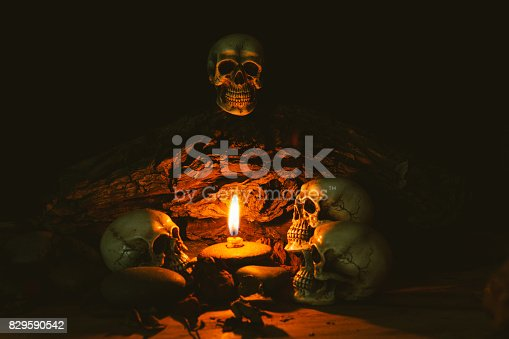 istock Scary skull set in low light candle use in halloween or mystery concept 829590542