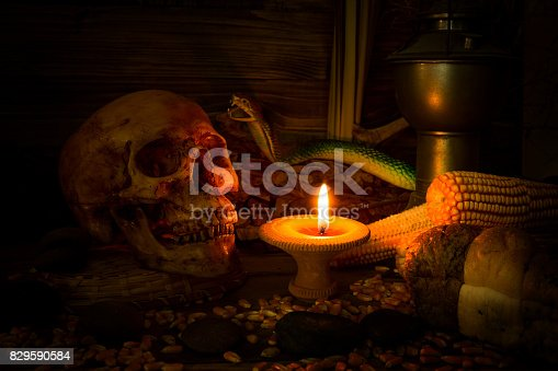 istock Scary skull set in low light candle use in halloween or mystery concept 829590584