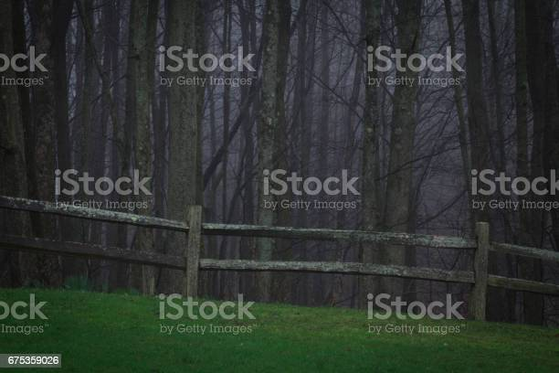 Scary woods with fenceline and dreadful horrific things that lurk in picture id675359026?b=1&k=6&m=675359026&s=612x612&h=9wvxycpy8 ngayalhird3 ayn2g0kwwbzvwyiovlijq=