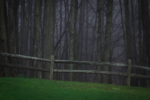 Scary woods with fenceline and dreadful horrific things that lurk in picture id675359026?b=1&k=6&m=675359026&s=612x612&w=0&h=gu7amcotu5fwyo7zi2medt7bcucx841qipjozhwywkc=