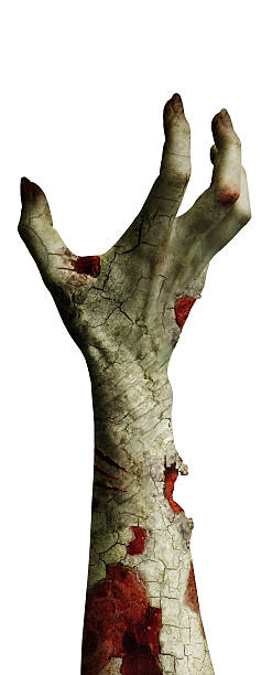 Scary zombie hand with dirty fingers isolated on white picture id493112318?b=1&k=6&m=493112318&s=612x612&w=0&h=ifs7b1x382xxpfxv0ycpvkioulqok szxngstls1pjm=