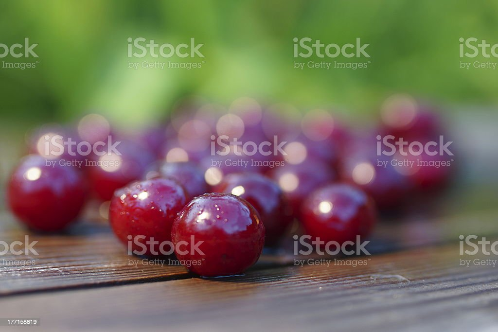 Scattered Cherry. royalty-free stock photo