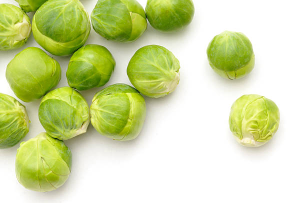 Scattered Sprouts stock photo