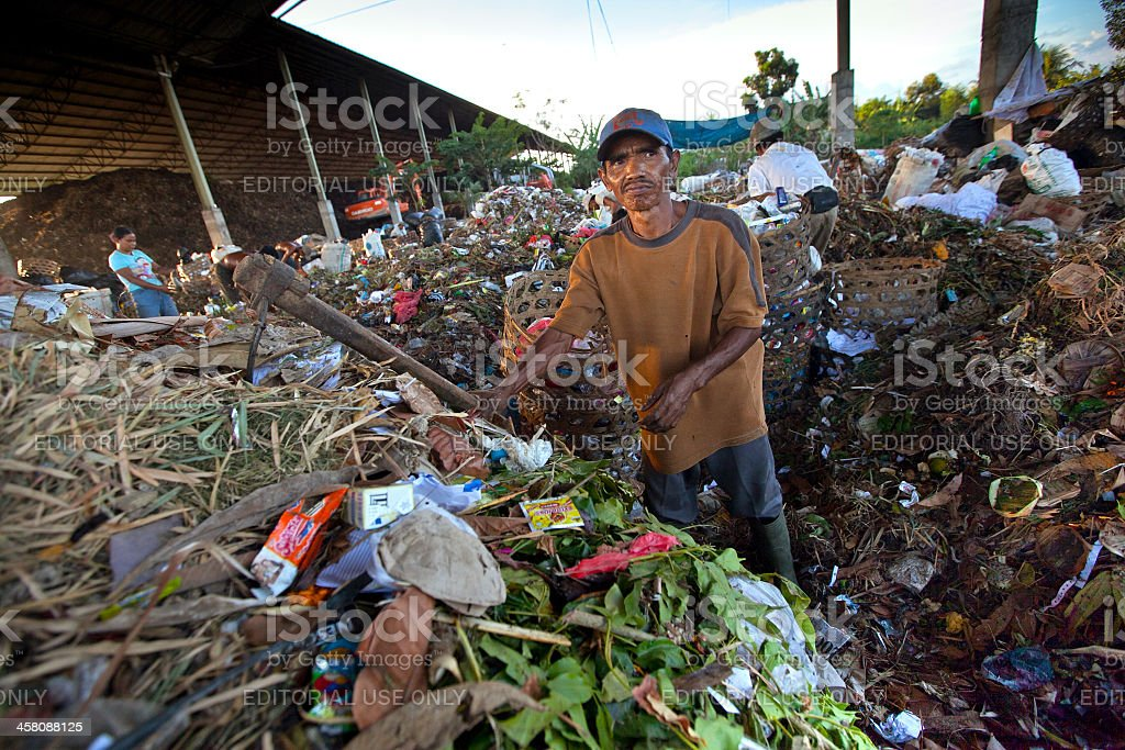Scavenging at the dump royalty-free stock photo