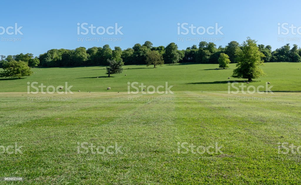 Scene across farmland in Derbyshire in UK - Royalty-free Agricultural Field Stock Photo
