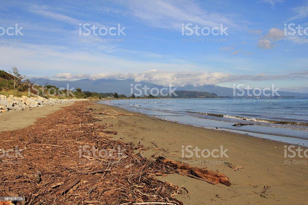 Scene after heavy rainfall, driftwood at Pohara Beach stock photo