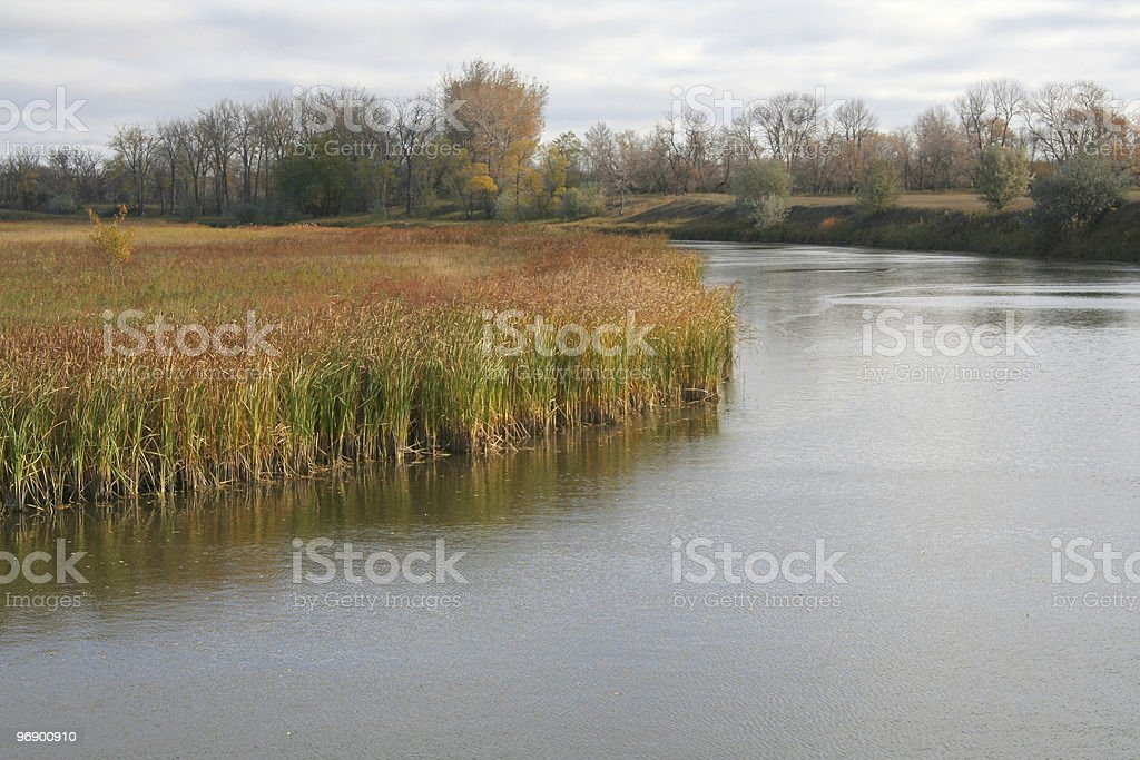 Scene from Old River Channel royalty-free stock photo
