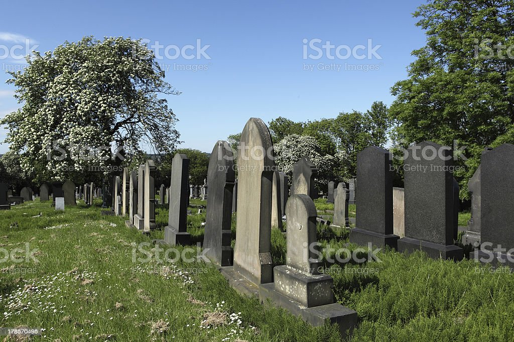 Scene in a Cemetery royalty-free stock photo