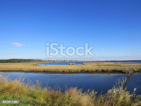 istock A scene on the Chesapeake Bay depicting nature and the landscape on the shore of the Chesapeake Bay in Maryland, USA. 642311062