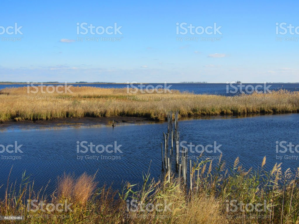 A scene on the Chesapeake Bay depicting nature and the landscape on the shore of the Chesapeake Bay in Maryland, USA. stock photo