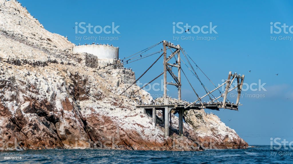 Scenery from Paracas National Park in Peru with different bird kinds. Ica, Peru stock photo
