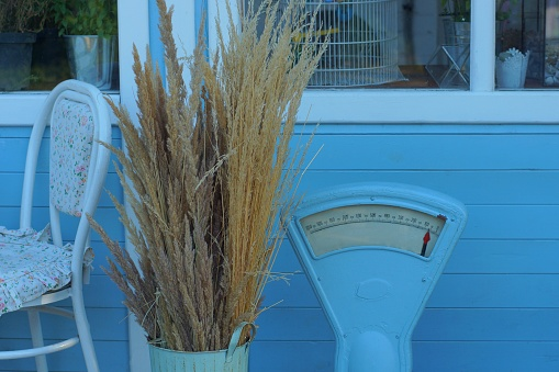 scenery from soviet old scales next to a dry bouquet of grass in a vase near the blue wall