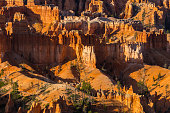Scenery in Bryce Canyon National Park