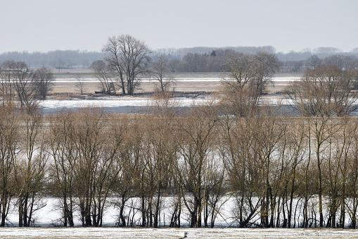 Scenery in the Elbaue near the city of Boizenburg in Mecklenburg Western Pomerania
