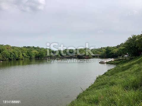 istock Scenery of Biwagaike in Odaka Greenery Park 1314188991