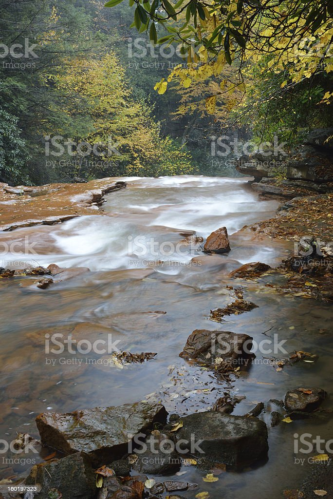 Scenery of Blackwater River royalty-free stock photo