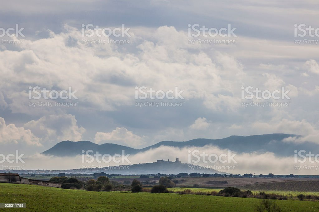 scenery of cereals fields and little town with castle stock photo