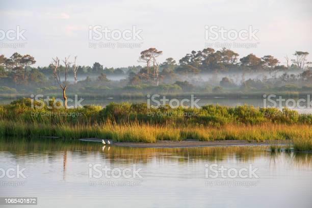 Scenery of chincoteague island picture id1065401872?b=1&k=6&m=1065401872&s=612x612&h=hxszzn30s2qpqeslomg373df6jsmhdqyca  bhrmrkw=