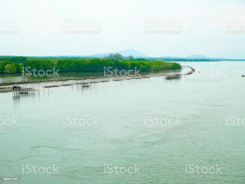 Scenery of estuary and fish farming royalty-free stock photo
