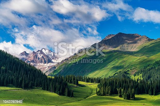 This photo was shot from Narat Grassland which is one of the most beautiful grassland in Xinjiang,china.