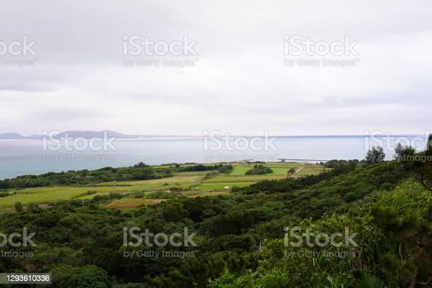Photo of Scenery of green fields in remote islands in Okinawa