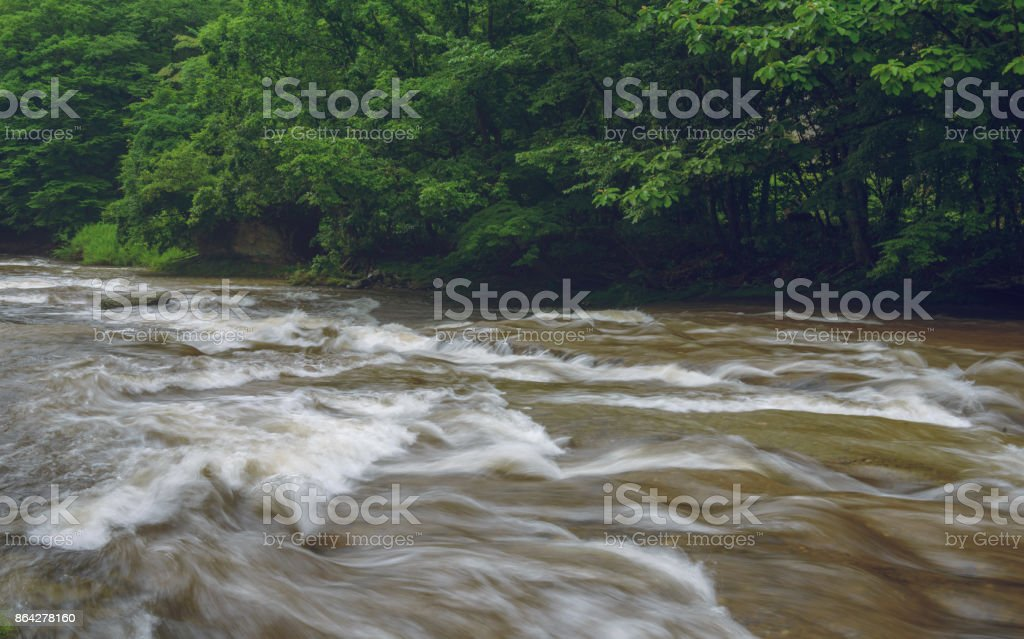 Scenery of the mountain stream royalty-free stock photo