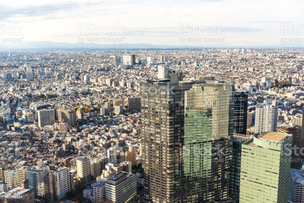 Scenery of Tokyo royalty-free stock photo