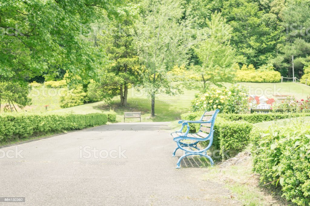 Scenery with bench royalty-free stock photo