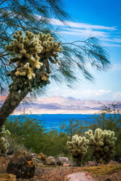 scenes at lake mead nevada arizona stateline stock photo