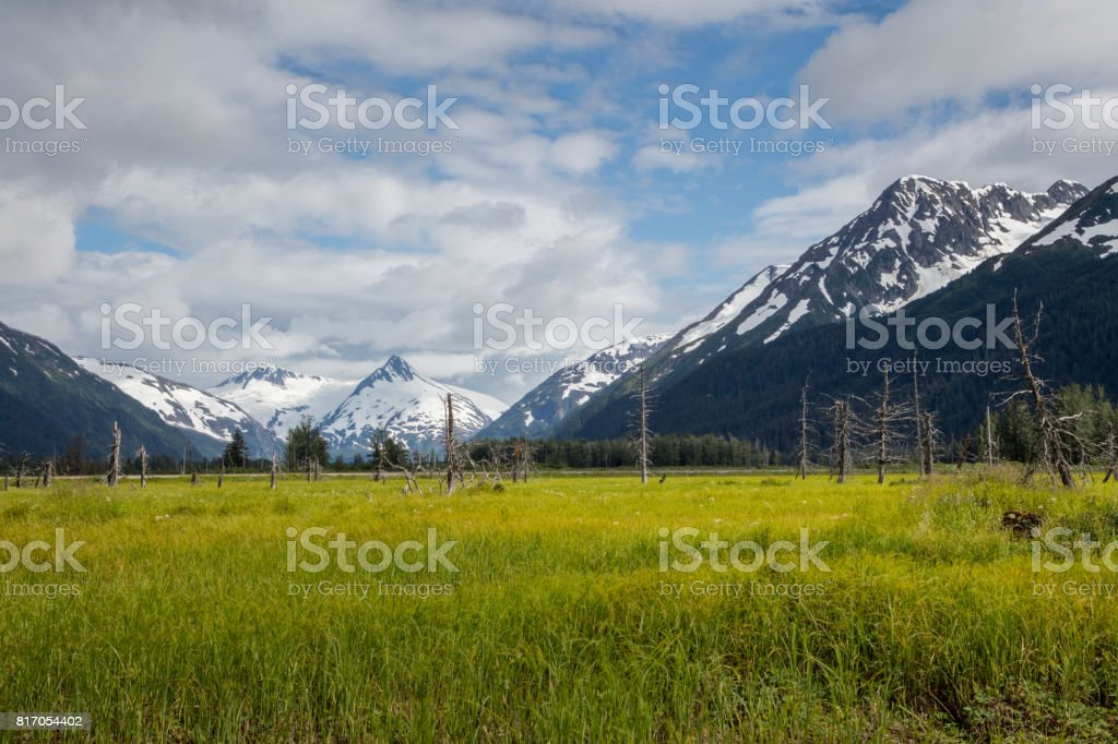 Scenic Alaska field and mountains stock photo