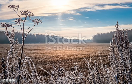 istock Scenic and bright landscape with sunrise at frosty autumn morning 808819894