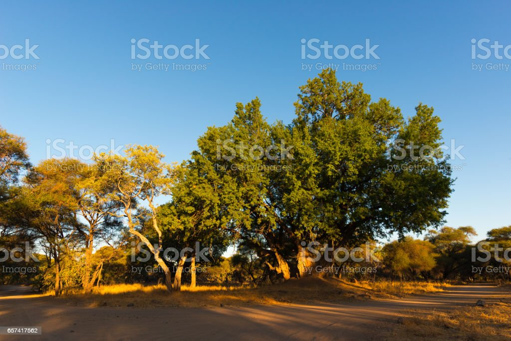 Scenic and colorful landscape stock photo