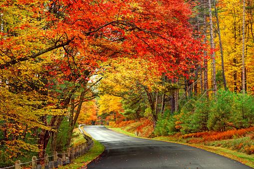Scenic Autumn Road in the Quabbin Reservoir Park area of Massachusetts.